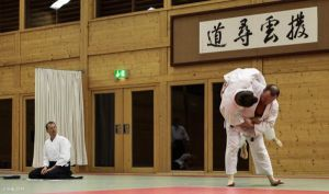 Aikido Kyuprüfung am 07.04.2014 in Wels: Koshinage
